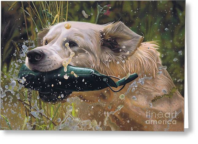 Working Dog Greeting Cards - Making a Splash Greeting Card by Karie-Ann Cooper