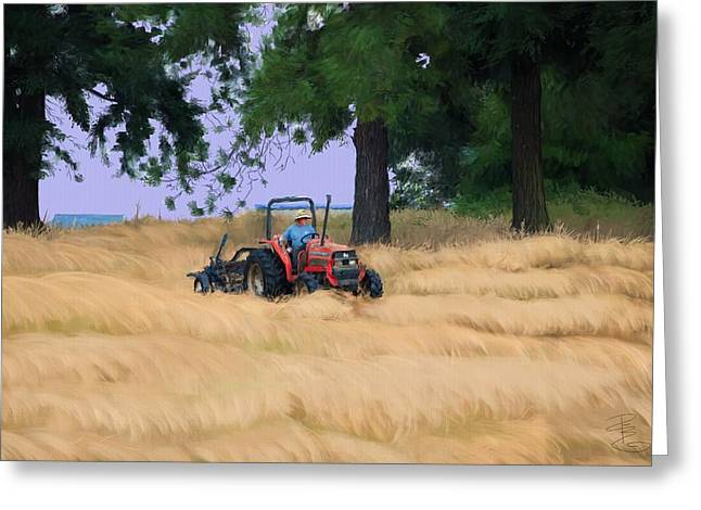 Hay Bales Greeting Cards - Making Hay Greeting Card by Debra Baldwin