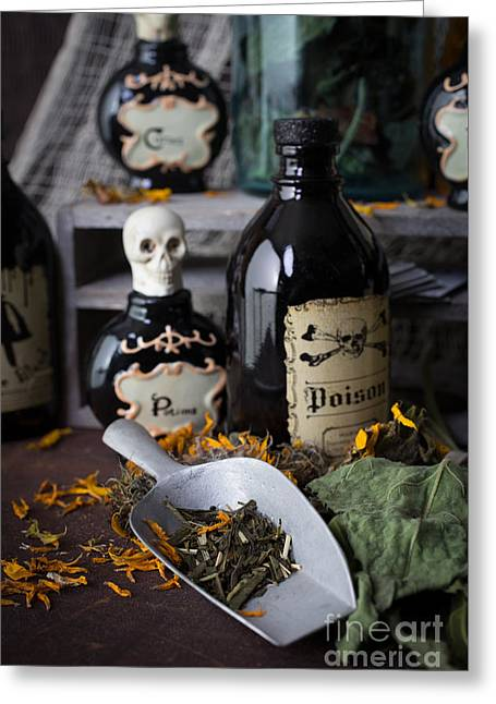 Potion Greeting Cards - Making Magic Greeting Card by Edward Fielding