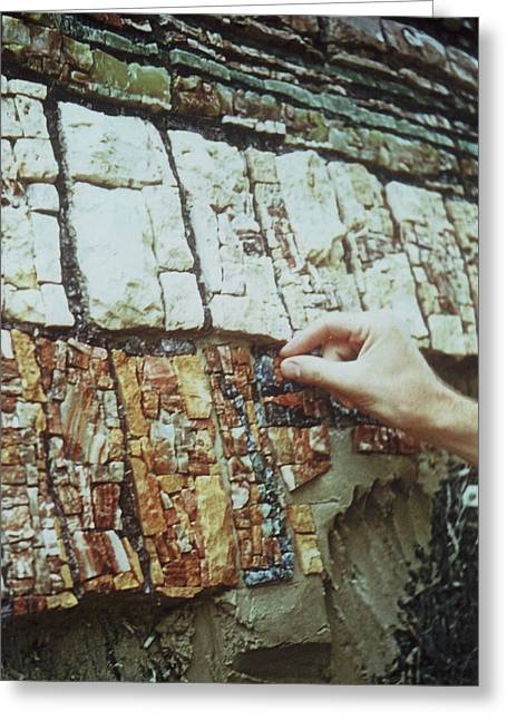 Mosaic Reliefs Greeting Cards - Making the Mosaic Case Verte 2 Greeting Card by James LeGros