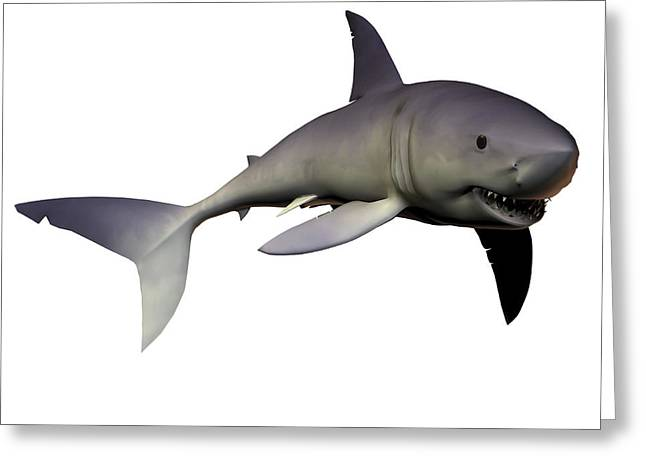 Swordfish Digital Art Greeting Cards - Mako Shark Greeting Card by Corey Ford