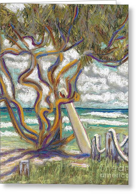 Surfing Art Greeting Cards - Malaekahana Tree Greeting Card by Patti Bruce - Printscapes