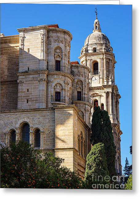 Andalusian Greeting Cards - Malaga Cathedral Greeting Card by Lutz Baar