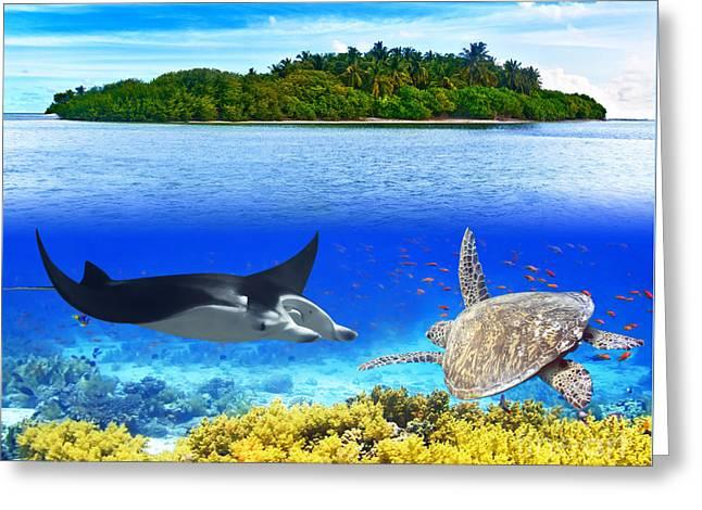 Manta Greeting Cards - Maldives Greeting Card by MotHaiBaPhoto Prints