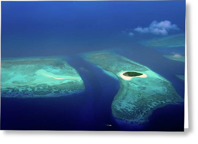 Maldivian Coral Reefs And  Desert Island Greeting Card by Jenny Rainbow