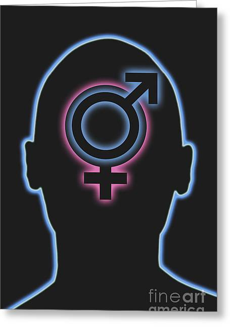 Asexual Greeting Cards - Male And Female Symbols Greeting Card by George Mattei