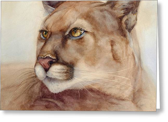 Cougar Greeting Cards - Male Cougar Greeting Card by Bonnie Rinier