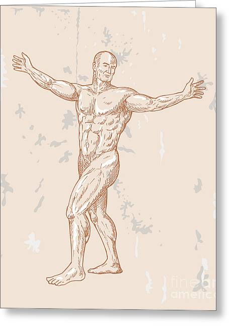 Full Body Digital Art Greeting Cards - Male Human Anatomy Greeting Card by Aloysius Patrimonio