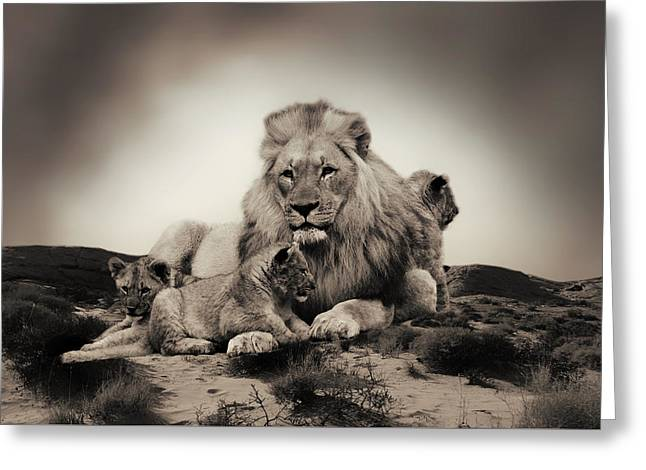Lions Den Greeting Cards - Male Lion And Cubs Greeting Card by Christine Sponchia