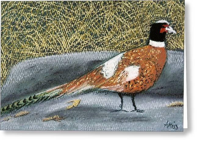 Hunting Bird Pastels Greeting Cards - Male Pheasant Greeting Card by Jan Amiss