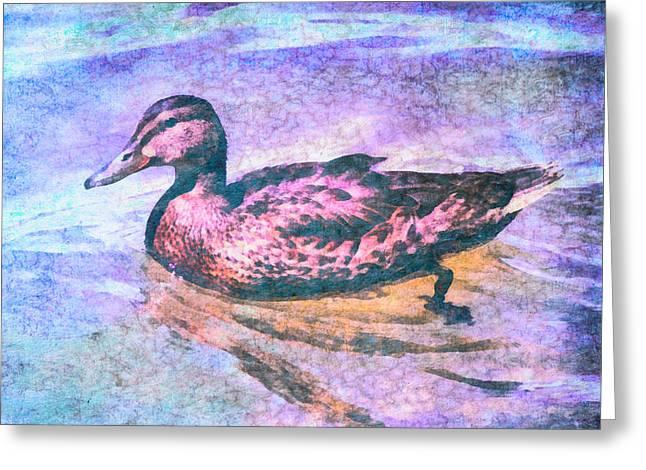 Mallard Duck Art Greeting Card by Priya Ghose