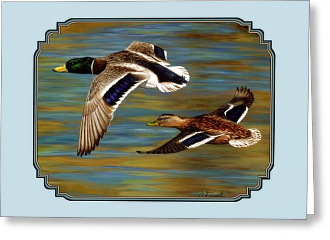 Bird In Flight Greeting Cards - Mallard Ducks iPhone Case Greeting Card by Crista Forest