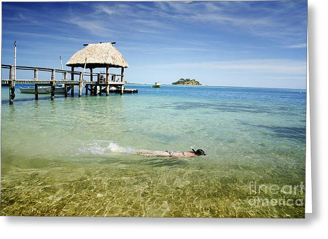 Snorkel Greeting Cards - Malolo Island Greeting Card by Himani - Printscapes