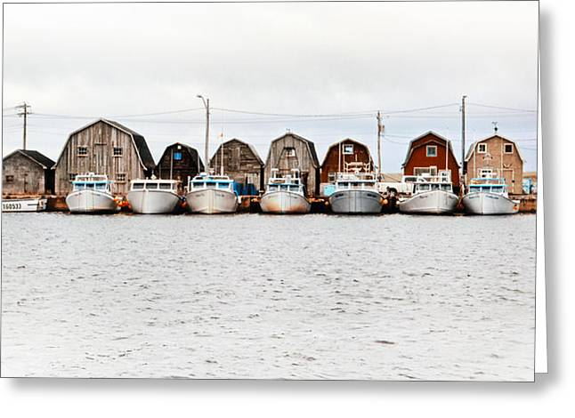 Princes Greeting Cards - Malpeque Harbour Line-up Greeting Card by Carolyn Derstine