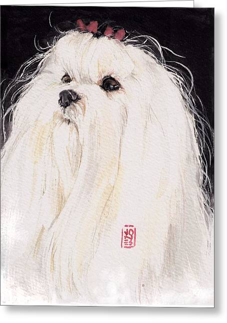 Debra Jones Greeting Cards - Maltese Greeting Card by Debra Jones