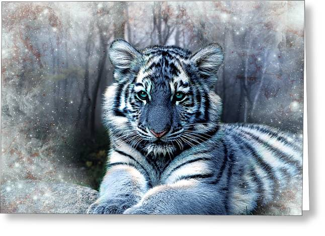 Fabled Digital Greeting Cards - Maltese Tiger Greeting Card by Julie L Hoddinott