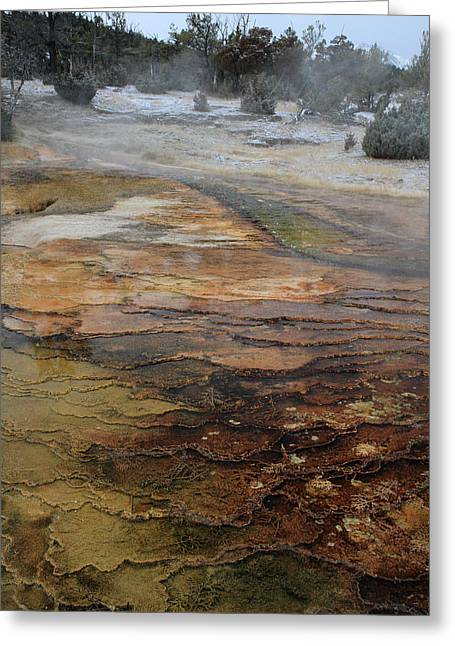 Out Of This World Greeting Cards - Mammoth hot springs in Yellowstone National Park Greeting Card by Pierre Leclerc Photography