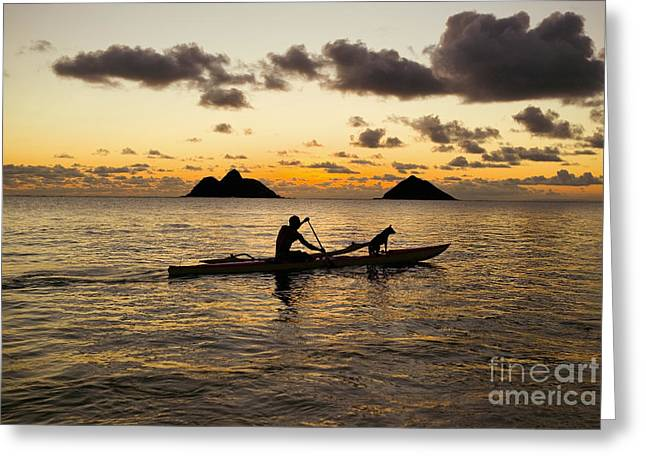 Hawaii Dog Photo Greeting Cards - Man And Dog In Canoe Greeting Card by Dana Edmunds - Printscapes