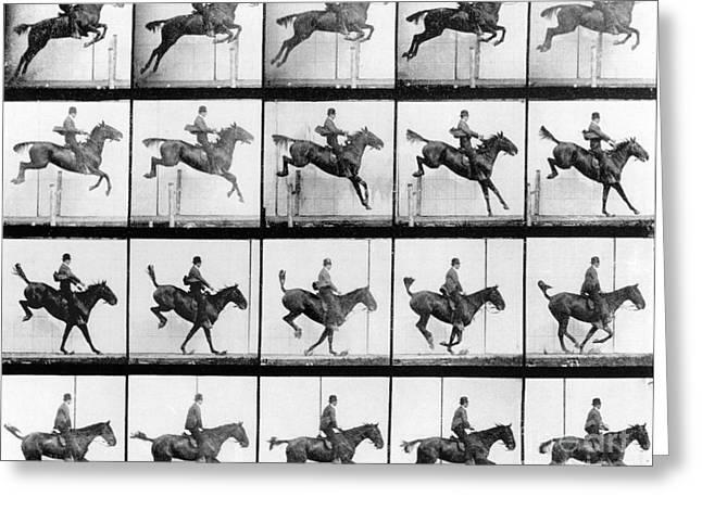 Horse Photographs Greeting Cards - Man and Horse jumping Greeting Card by Eadweard Muybridge