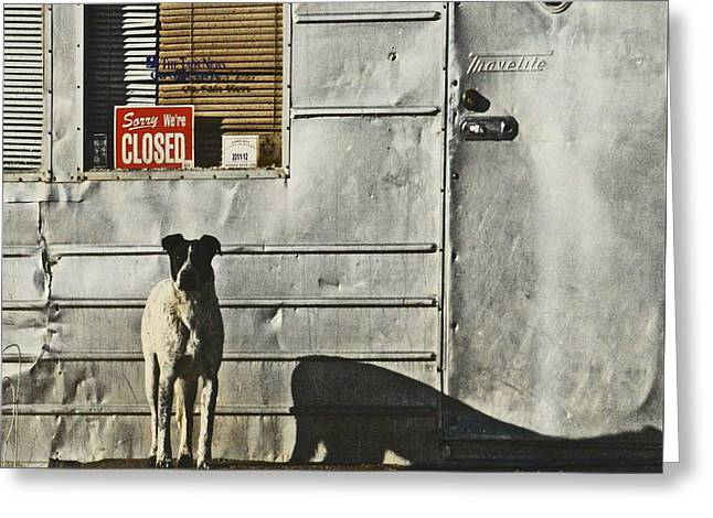 Caves Greeting Cards - Man Cave Dog Guarding the Store Closed Sign Greeting Card by CheyAnne Sexton