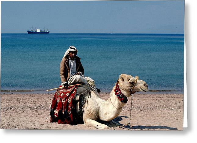 Dromedary Greeting Cards - Man with Camel at Red Sea Greeting Card by Carl Purcell