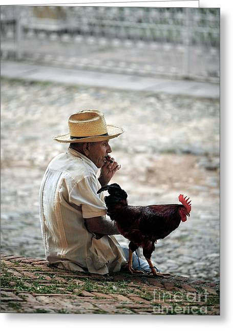 Cigar Greeting Cards - Man with Rooster - Trinidad - Cuba  Greeting Card by Rod McLean