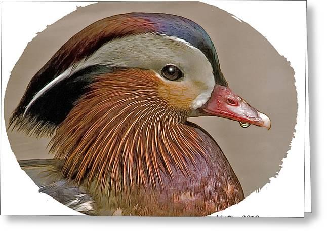 Ducks Digital Art Greeting Cards - Mandarin Duck  Greeting Card by Larry Linton