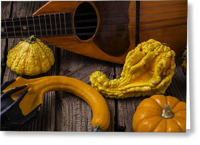 Hand Made Greeting Cards - Mandolin And Gourds Greeting Card by Garry Gay