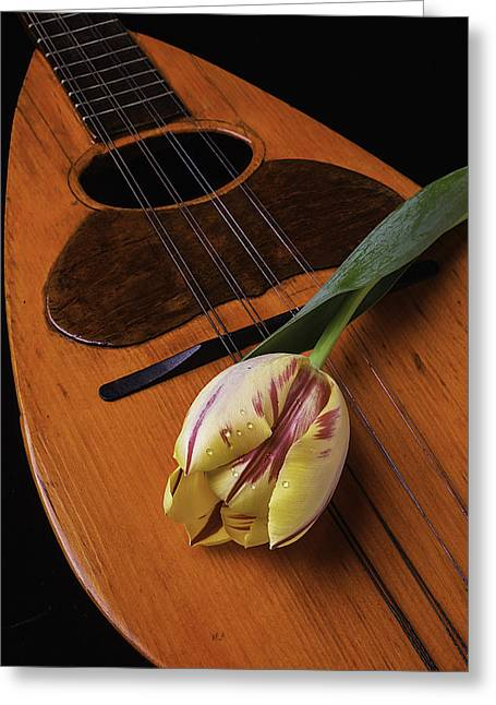Rain Drop Greeting Cards - Mandolin And Tulip Greeting Card by Garry Gay