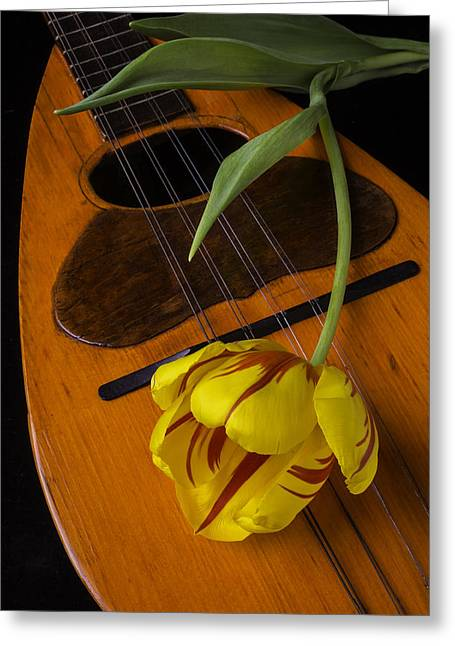 Mandolin Greeting Cards - Mandolin With Red And Yellow Tulip Greeting Card by Garry Gay