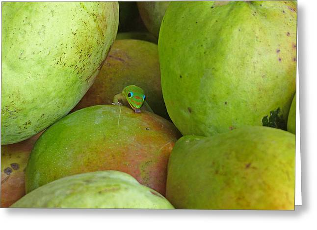 Mango Greeting Cards - Mangoes Etc. Greeting Card by Lozja Mattas