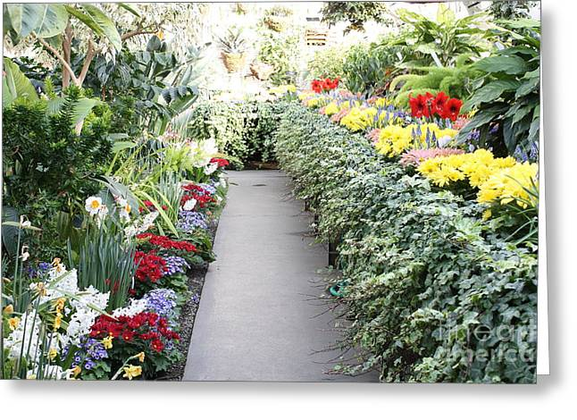Manito Park Conservatory Greeting Card by Carol Groenen