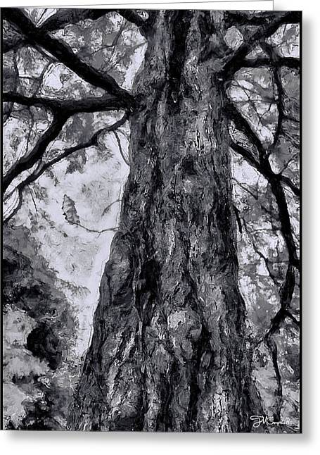 Gnarly Greeting Cards - Many Faced Tree Greeting Card by Theresa Campbell