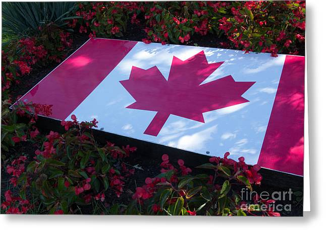 Greeting Cards - Maple Leaf and Flowers Greeting Card by Ann Horn