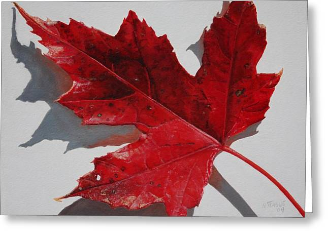 Maple Leaf Red 1 Up Close Greeting Card by Nancy Teague
