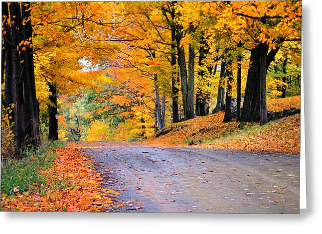Scenic Drive Greeting Cards - Maples of Rupert Vermont Greeting Card by Thomas Schoeller