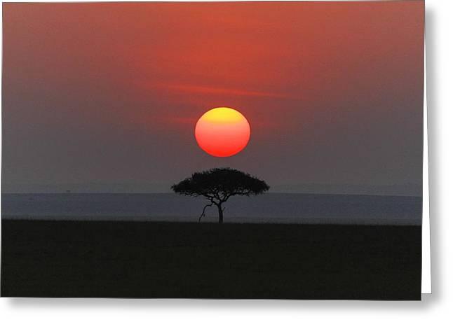 Mara Sunset Greeting Card by Christa Niederer