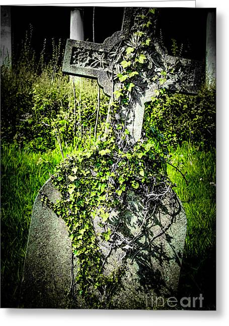 Ghostly Leaning. Greeting Cards - Marcabre but artistic look Greeting Card by F Helm
