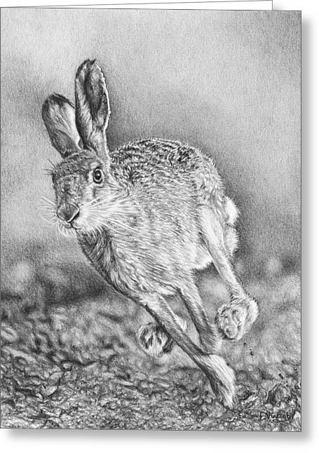 March Hare Greeting Cards - Need for Speed Greeting Card by Frances Vincent