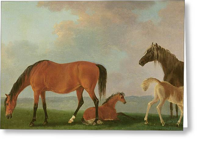 Mares And Foals Greeting Card by Sawrey Gilpin