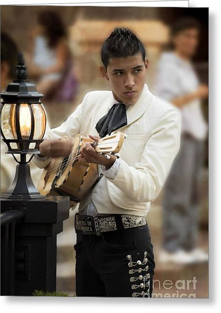 Feeling Young Greeting Cards - Mariachi Performer Greeting Card by Juli Scalzi
