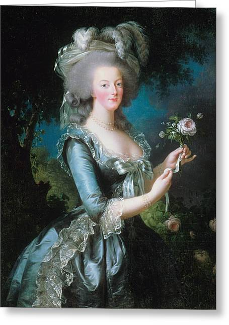Marie-antoinette With The Rose Greeting Card by Louise Elisabeth Vigee Le Brun