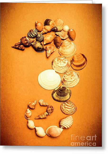 Marine Seashell Seahorse Design Greeting Card by Jorgo Photography - Wall Art Gallery