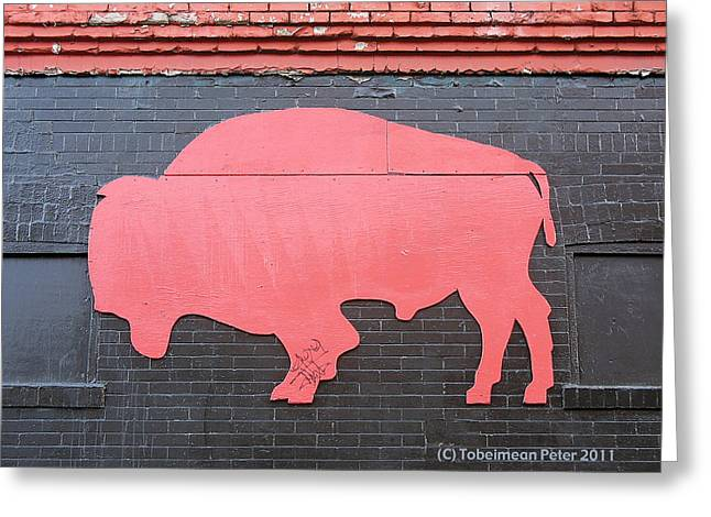 Seattle Taverns Greeting Cards - Maris Bison Greeting Card by Tobeimean Peter