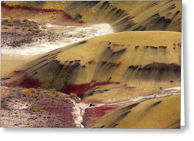 Marking Greeting Cards - Marked Hills Greeting Card by Mike  Dawson