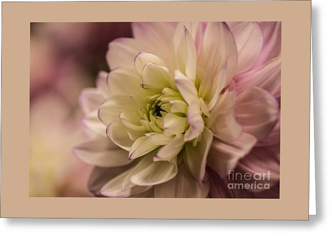 Marry Me Greeting Card by Nick  Boren