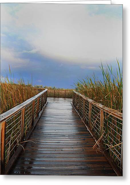 Marshes Digital Greeting Cards - Marsh Boardwalk Greeting Card by Abbey Staum