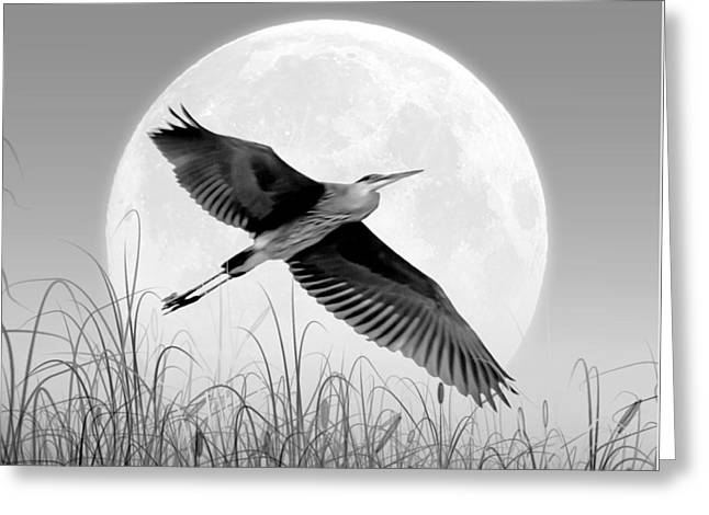 Artistically Altered Greeting Cards - Marsh Mellow Moon - Grayscale Greeting Card by Brian Wallace