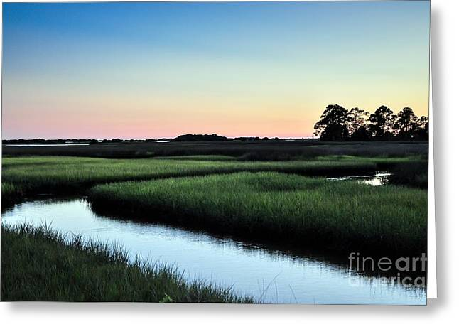 Marsh Sunset Greeting Card by Debbie Green