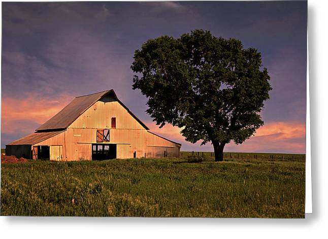 Recently Sold -  - Barn Door Greeting Cards - Marshalls Farm Greeting Card by Lana Trussell